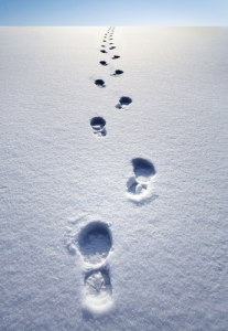 Out turned footprints in the snow.