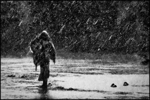 Rainstorm - www.zoriah.net